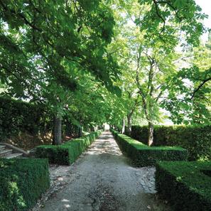 Escale au milieu des vignes au Château de la Gaude